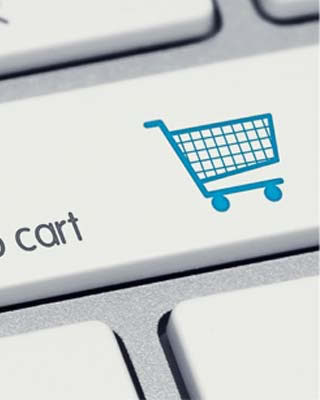 eCommerce, Desarrollo Web
